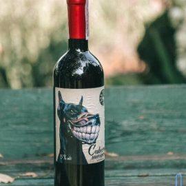 Вино Каберне-Совіньйон сухе червоне Дог Смайл Котнар, Cabernet Sauvignon Dog Smile Cotnar 0,75 л.