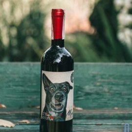 Вино Мерло червоне напівсухе Дог Смайл Котнар, Merlot Dog Smile Cotnar 0,75 Л.
